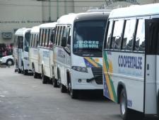 Assaltantes fazem arrastão em ônibus de cooperativa