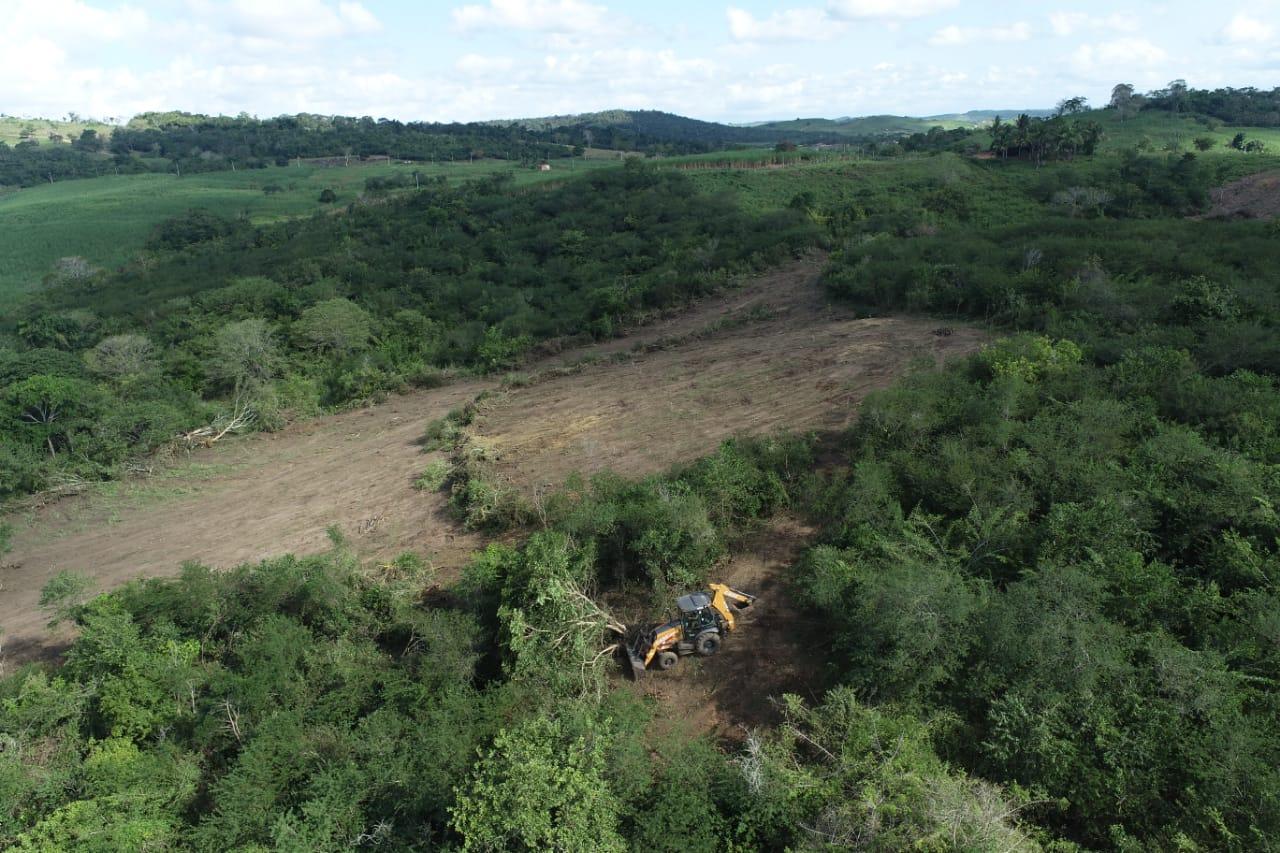 Adema e PM flagram desmatamento de 2,8 hectares em Divina Pastora